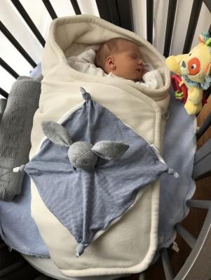 Mini-Woody-is-3-weeks-old.jpg